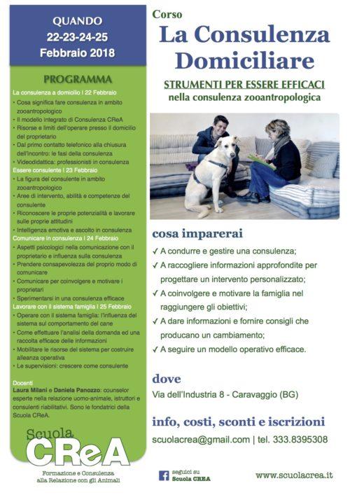 la-consulenza-domiciliare-_-vii-edizione