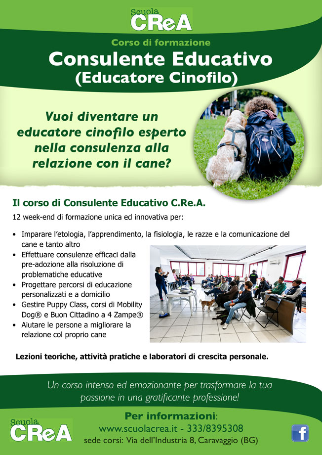 locandina-consulente-educativo