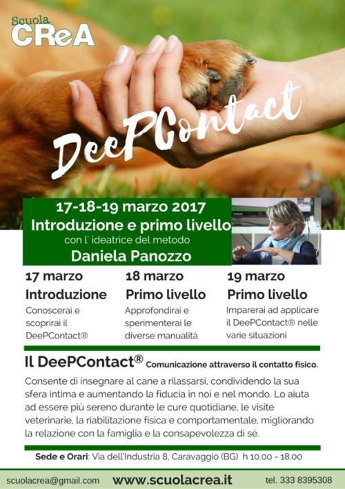 locandina-deepcontact-2017