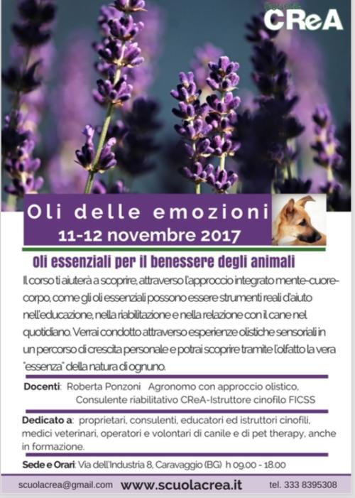 oli-delle-emozioni_-locandina_2017