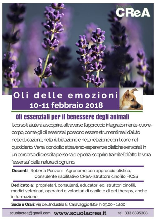 loc_oli-delle-emozioni_feb-2018