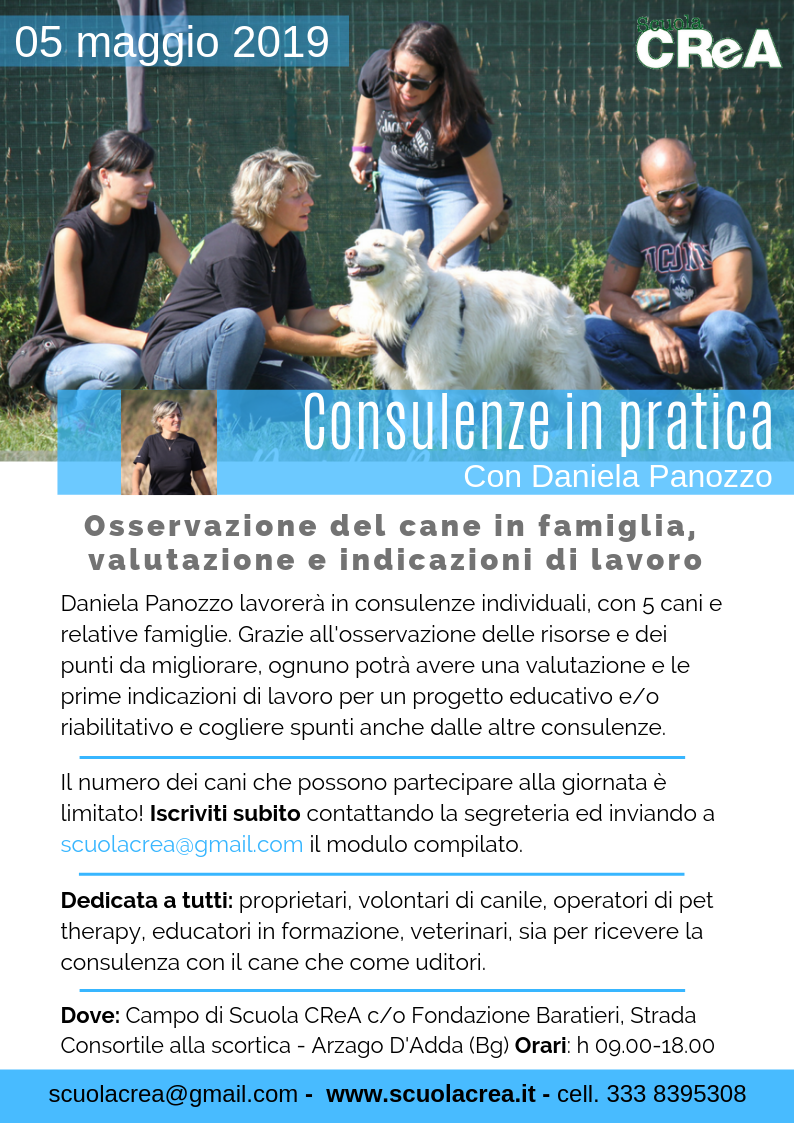 consulenze-in-pratica-2019