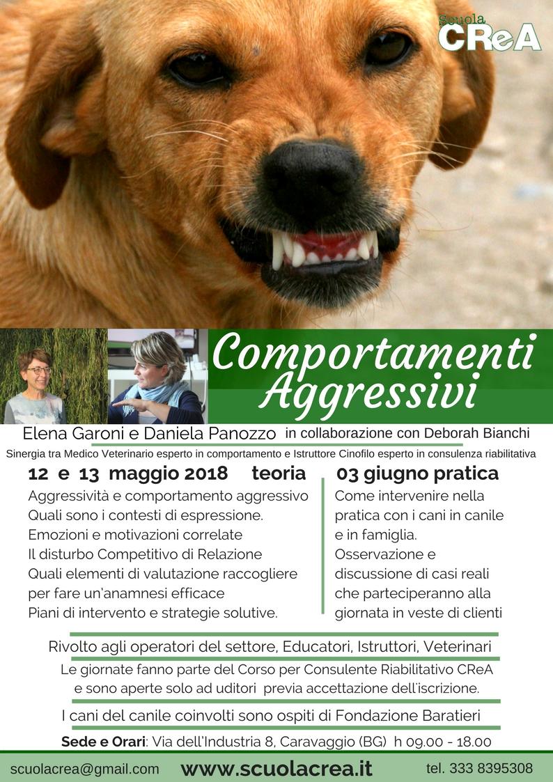loc-_comp-aggressivi_marzo-2018