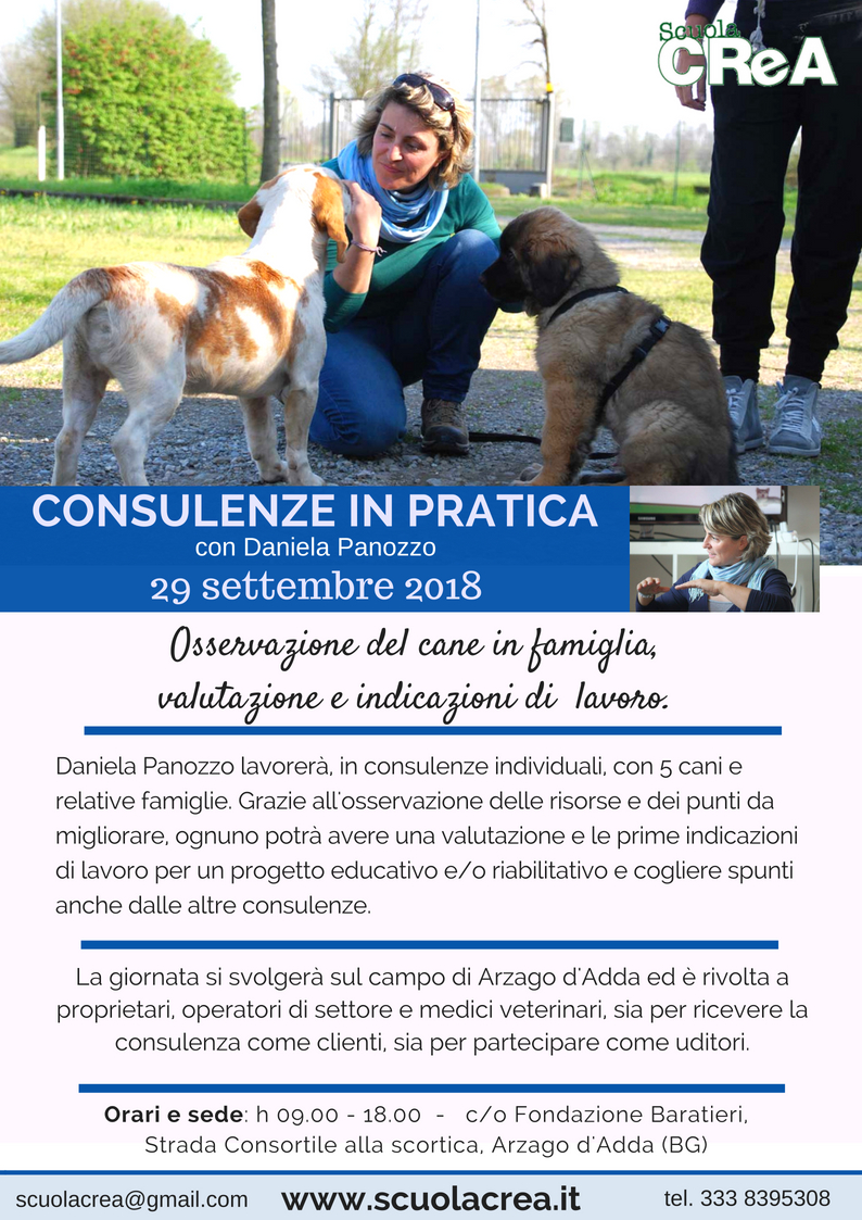 daniela-consulenze-sul-campo-2018